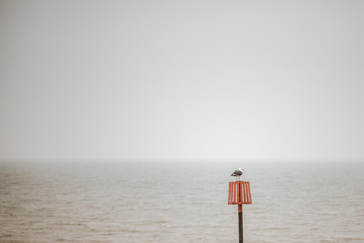 east quay venue wedding seagull